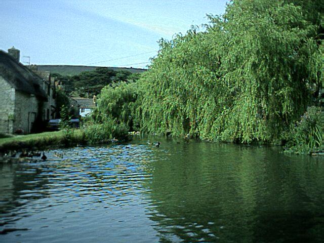 Pictures of Sutton Poyntz 91