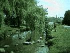 Pictures of Sutton Poyntz 45